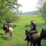 Vacanze Piemonte Maneggio Passeggiate a cavallo